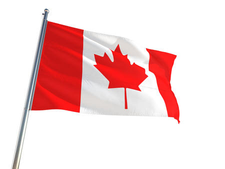 Canada National Flag waving in the wind, isolated white background. High Definition