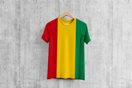 Guinea flag T-shirt on hanger, Guinean team uniform design idea for garment production. National wear.
