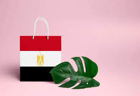 Egypt shopping concept. National cardboard shopping bag with monstera leaf and pink background. Online shopping theme.