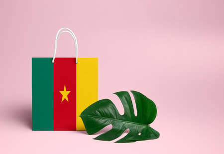 Cameroon shopping concept. National cardboard shopping bag with monstera leaf and pink background. Online shopping theme. Imagens