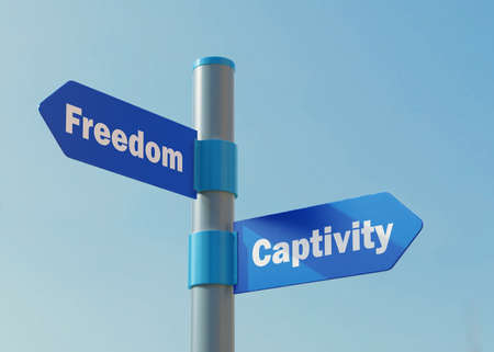 Street Sign the direction Way to Freedom versus Captivity.