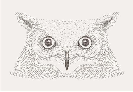 hand getekende vector schets decoratieve uilillustratie