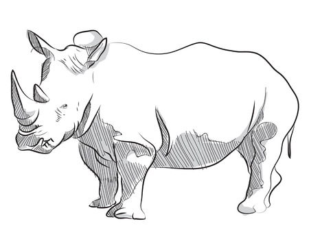Vector sketch hand drawing illustration of rhino standing