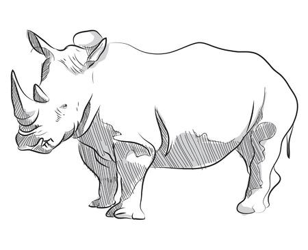 Vector main croquis dessin illustration de rhinocéros debout