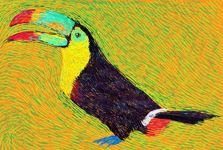 colore: post impressionist style colore toucan bird illustration