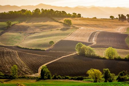 Stunning beautiful landscape view of Tuscany fields at Barberino di Mugello in the Italian region Tuscany in summer