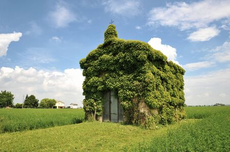 An old ivy-covered church in countryside in a summer day against a blue sky with some clouds - Concept of nature recovering its spaces - Countryside landscapes - Eco-sustainable tourism and wanderlust Standard-Bild