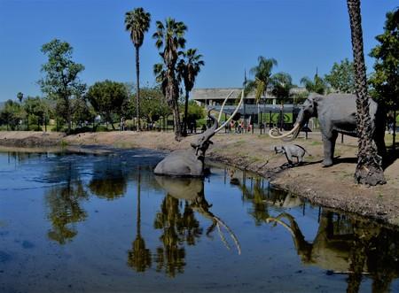 Mammoth display at La Brea Tar Pits, Los Angeles, California