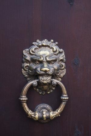 tocar la puerta: Puerta aldaba antiguo castillo en Ucrania Dubno Foto de archivo