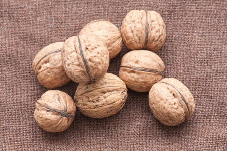 walnuts close up on the burlap background photo