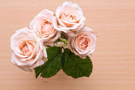 pink roses in a vase on a wooden desk photo