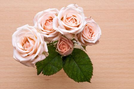 pink roses in a vase on a wooden desk Stock Photo - 18234993