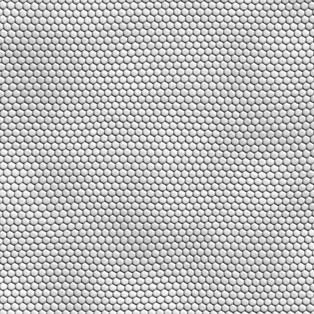seamless white snakeskin texture photo
