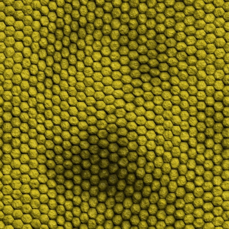 snake skin with the pattern lozenge style Stock Photo