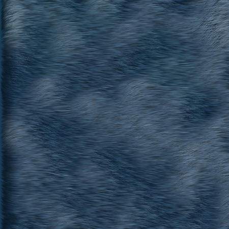 blue fur texture photo