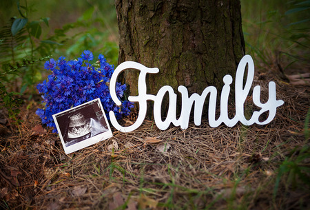 photo a child in the picture ultrasound near a tree, with a bouquet and a sign that says family.