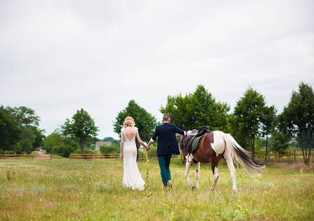 compatibility: Young Couple and Horse walk in the summer Stock Photo