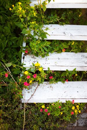 Very beautiful old wooden staircase surrounded by greenery. Stock Photo
