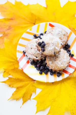 colorful cupcakes on a plate with fresh blueberries and yellow autumn leaves