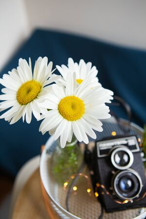 Old vintage rustic camera with a bouquet of daisy flowers on a wooden board. View from above.