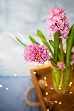 Beautiful pink hyacinths stand in a vase on an old wooden tray, garland, beautiful blink, surprise concept. Breakfast in bed, beautiful spring morning, sunny day. Close-up. Place for an inscription.