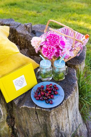 Picnic on the grass. Cherry, bouquet of flowers, fruit, book drinks