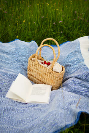 Very beautiful picnic in nature in the park. Straw bag, book, blue plaid. Outdoor recreation. Close-up