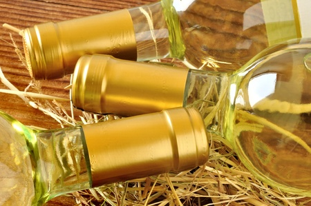 Bottles of fine italian white wine photo