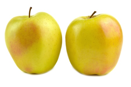 golden apple: Golden delicious apple, typical of Trentino Alto Adige, Italy