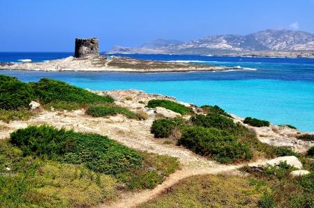 Pohled na La Pelosa pláže, vyznačující se tím, průhlednosti svých vod a bělost jeho písku, je považována za jednu z nejkrásnějších pláží na Sardinii v Itálii