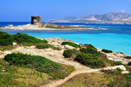 View of La Pelosa beach, characterized by the transparency of its waters and the whiteness of its sand, is considered one of the most beautiful beaches in Sardinia, Italy