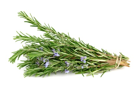 Rosemary isolated on white photo