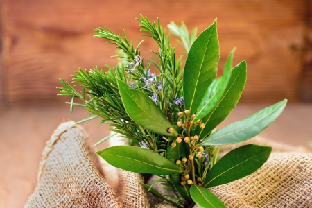 Rosemary, laurel and sage, selective focus