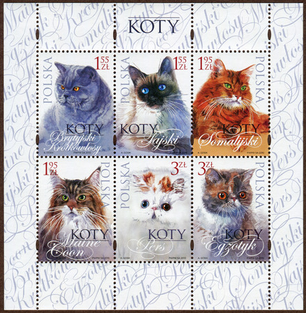 Stamps depicting various breeds kittens