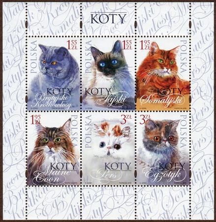 breeds: Stamps depicting various breeds kittens