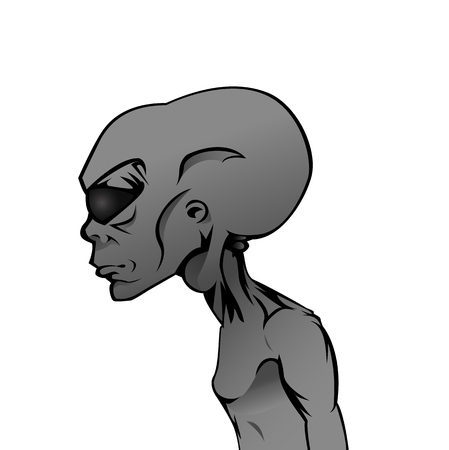 isolated on grey: Vector illustration of isolated Grey Alien