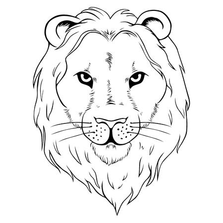 hardiness: Lion head icon or logo Illustration