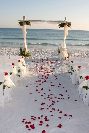 boda en la playa: Rosa pedales de la l�nea nupcial camino que conduce a la boda arco en la playa. Foto de archivo