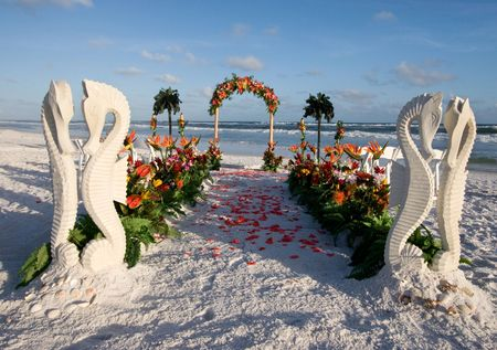 Seahorses guard the path to the wedding archway lined with rose pedals.