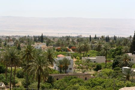 Surrounded by desert, palm trees and lush vegetation abounds in the spring feed city of Jericho, Israel.