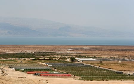 Farming in Israel takes place in the desert next to the Dead Sea Stock Photo - 4036967