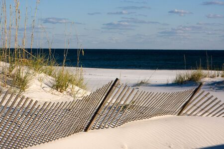 Sand fences along the coastline use the power of the wind to built up the dunes and promote the growth of sea oats along the Gulf Coast around Pensacola, Florida.  Stock Photo - 4296563