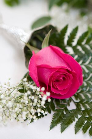 Perfect red rose accented with ferns and babys breath.