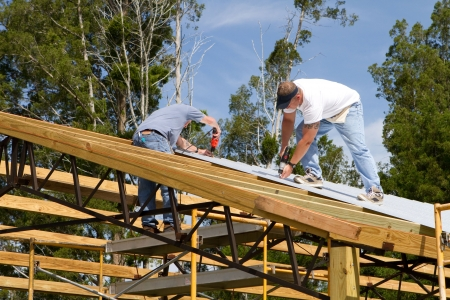 Two roofers use screw-guns to bolt corrugated metal sheets to the roof rafters of a barn under construction.