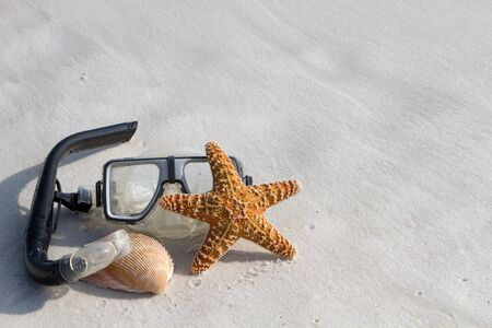 Mask, starfish and a shell lay on a white sand beach. Room for copy on top and right.