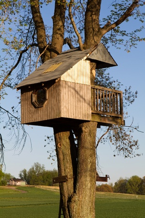 Homemade childrens treehouse is built elevated in a large tree in a farming community.