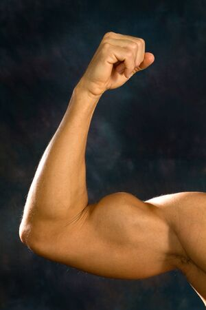 arm muscles: Man shows off his biceps brachii muscles.