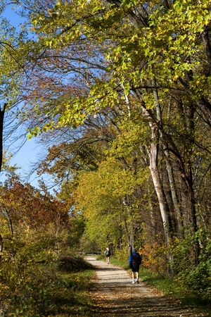 Hiker and a jogger exercise along a dirt trail in a park during the autumn foliage. photo