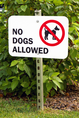 posted: Sign prohibiting dogs on the grass is posted on a metal pole with a graphic and notice of  No Dogs Allowed   Stock Photo