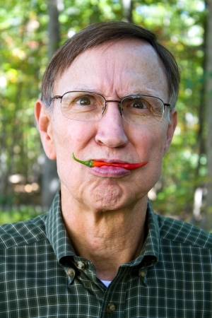 pungency: Old man holds a red pepper from the garden in his lips with a silly look on his face.